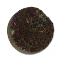 Cabochon Druzy Agate 18 mm Brown Iris x1