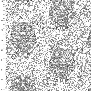 Tela Color Me Michael Miller - What a hoot White x10cm